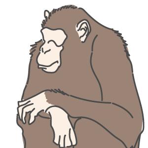 チンパンジーの精液検査をしてみました